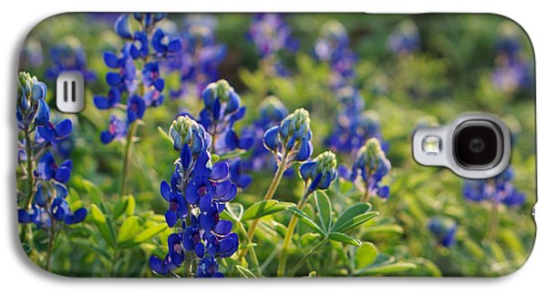 Texas Bluebonnets In Early Sun Galaxy S4 Case by Lisa  Spencer