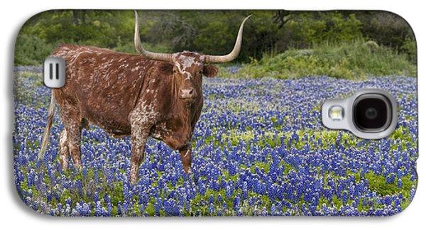 Texas Longhorn In Texas Bluebonnets 4 Galaxy S4 Case by Rob Greebon