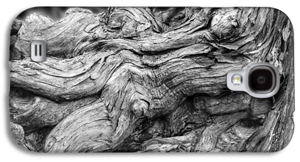 Textures Of Nature Black And White Galaxy S4 Case by Jack Zulli