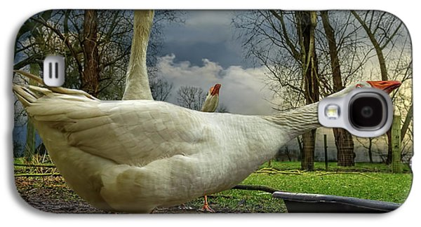 The 3 Geese Galaxy S4 Case