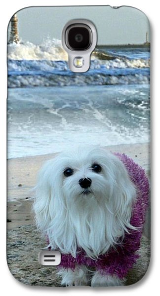 The Beach In Winter Galaxy S4 Case by Morag Bates
