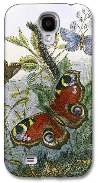 The Butterfly Vivarium Galaxy S4 Case by English School