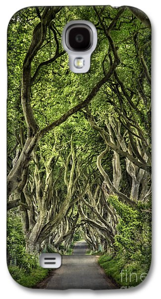 The Dark Hedges Galaxy S4 Case by Evelina Kremsdorf