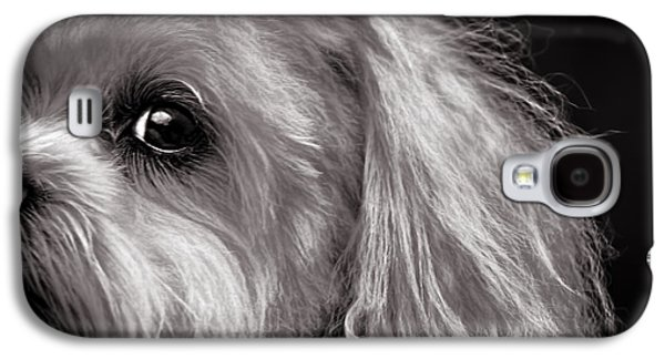 The Dog Next Door Galaxy S4 Case