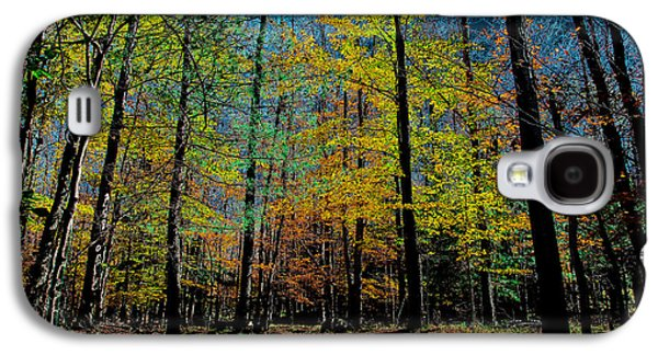 The Final Days Of Fall Galaxy S4 Case by David Patterson