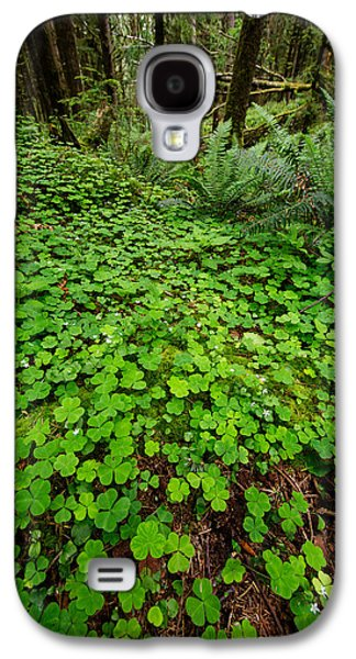 The Forest Floor Galaxy S4 Case by Rick Berk