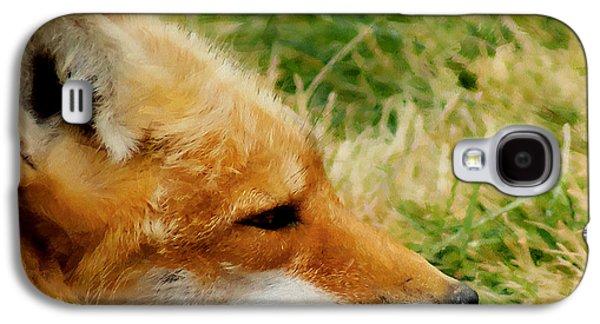 The Fox 7 Galaxy S4 Case by Ernie Echols