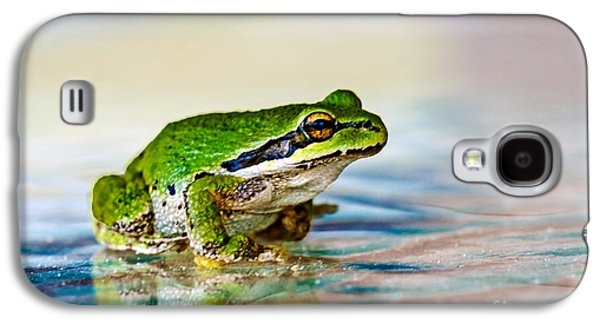 The Green Frog Galaxy S4 Case by Robert Bales