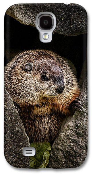 The Groundhog Galaxy S4 Case by Bob Orsillo