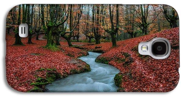 Autumn Landscape Galaxy S4 Case - The Guards by Vladi Garcia