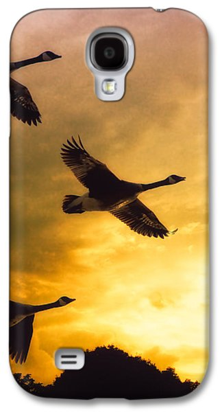 The Journey South Galaxy S4 Case by Bob Orsillo