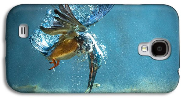 The Kingfisher Galaxy S4 Case