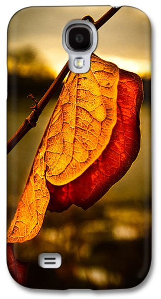 The Leaf Across The River Galaxy S4 Case by Bob Orsillo