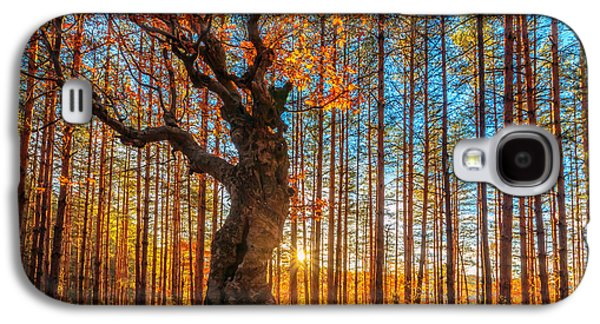The Lord Of The Trees Galaxy S4 Case