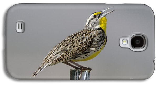 The Meadowlark Sings  Galaxy S4 Case by Jeff Swan