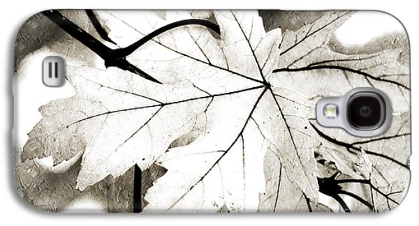 The Mysterious Leaf Abstract Bw Galaxy S4 Case by Andee Design