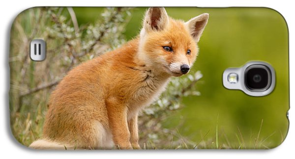 The New Kit ...curious Red Fox Cub Galaxy S4 Case by Roeselien Raimond