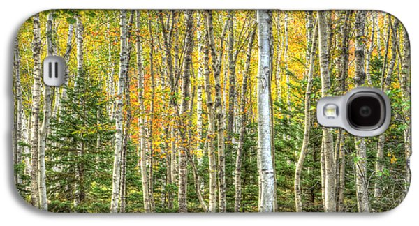 The North Woods Galaxy S4 Case