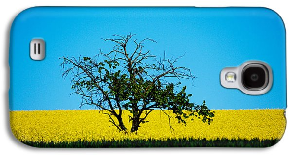 The Old Tree  Galaxy S4 Case