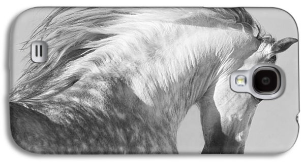 The Spanish Stallion Tosses His Head Galaxy S4 Case by Carol Walker