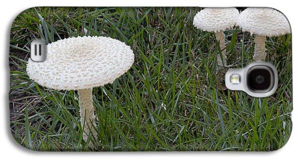 Thiers Lepidella Mushrooms Galaxy S4 Case by Kenneth M. Highfill