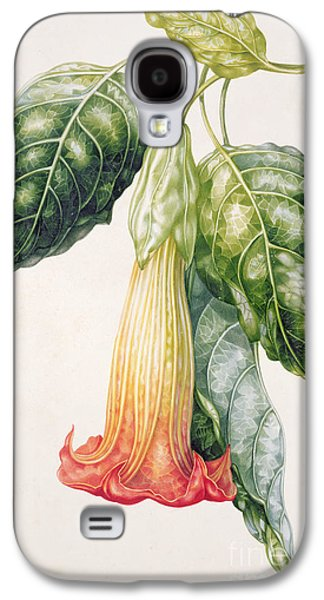 Thorn Apple Flower From Ecuador Datura Rosei Galaxy S4 Case by Augusta Innes Withers