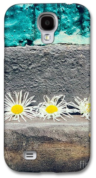 Galaxy S4 Case featuring the photograph Three Daisies Stuck In A Door by Silvia Ganora