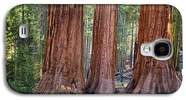 Three Graces Yosemite Galaxy S4 Case