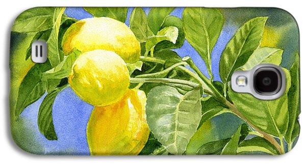 Three Lemons Galaxy S4 Case by Sharon Freeman
