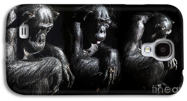 Three Pensive Chimps Galaxy S4 Case by Avalon Fine Art Photography