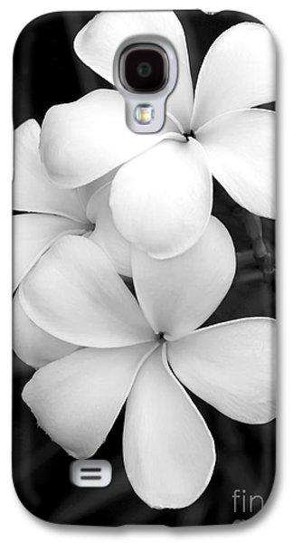 Three Plumeria Flowers In Black And White Galaxy S4 Case by Sabrina L Ryan