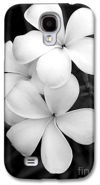 Orchid Galaxy S4 Case - Three Plumeria Flowers In Black And White by Sabrina L Ryan