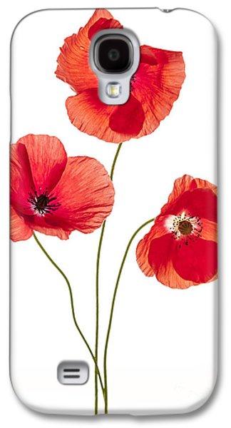 Three Poppy Flowers Galaxy S4 Case by Elena Elisseeva