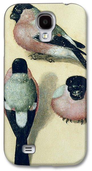 Three Studies Of A Bullfinch Galaxy S4 Case by Albrecht Durer