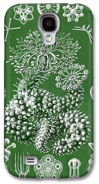 Thuroidea From Kunstformen Der Natur Galaxy S4 Case