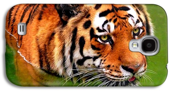 Tiger Painting Galaxy S4 Case by Christina Rollo