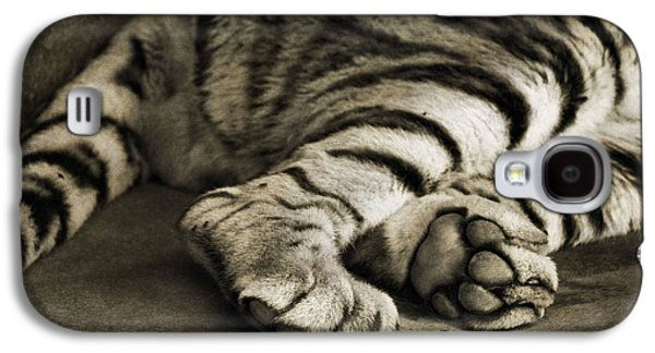 Tiger Paws Galaxy S4 Case by Dan Sproul