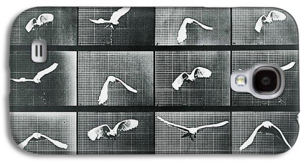 Time Lapse Motion Study Bird Monochrome  Galaxy S4 Case by Tony Rubino