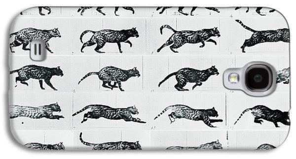 Time Lapse Motion Study Cat Monochrome  Galaxy S4 Case by Tony Rubino
