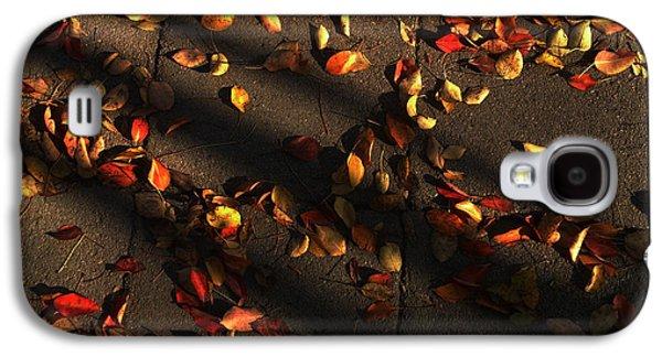Timeless Galaxy S4 Case
