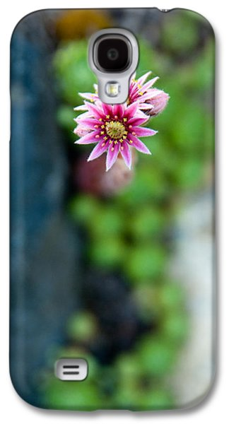 Tiny Blossom Galaxy S4 Case by Erin Kohlenberg