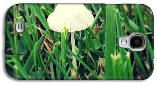Tiny Mushroom In Grass #mushroom #grass Galaxy S4 Case by Marianna Mills