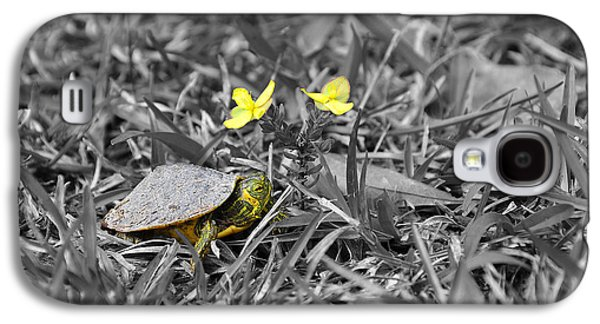 Tiny Turtle Selective Color Galaxy S4 Case
