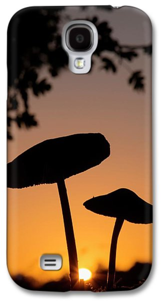 Toadstools At Sunset Galaxy S4 Case by Dr. John Brackenbury