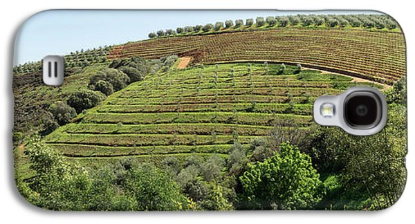 Tokara Vineyard, Delaire Graff Estate Galaxy S4 Case