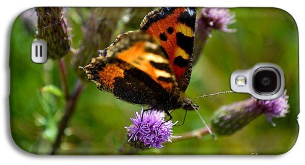 Tortoise Shell Butterfly Galaxy S4 Case