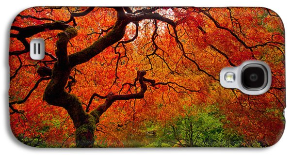 Tree Fire Galaxy S4 Case by Darren  White