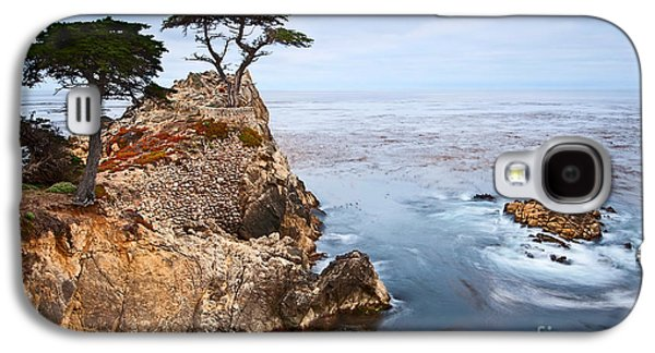 Tree Of Dreams - Lone Cypress Tree At Pebble Beach In Monterey California Galaxy S4 Case by Jamie Pham