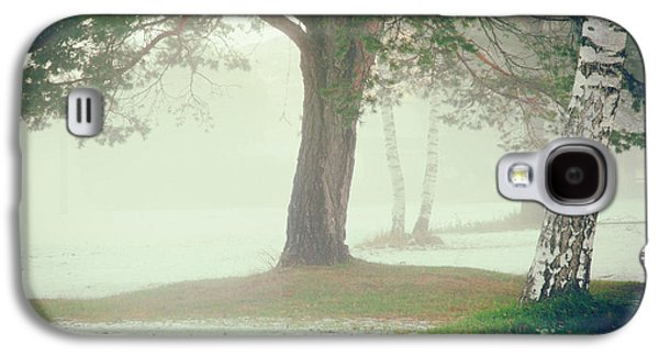 Galaxy S4 Case featuring the photograph Trees In Fog by Silvia Ganora