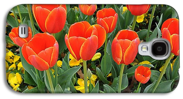 Trendy Tulips  Galaxy S4 Case